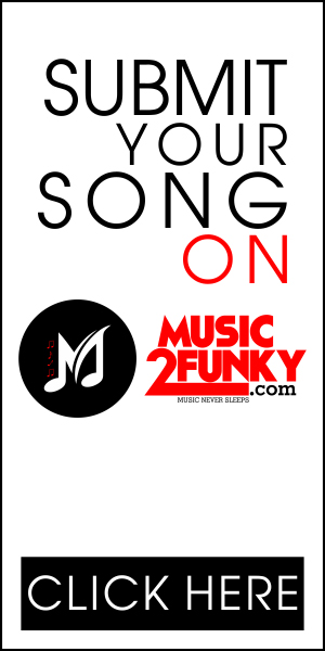 300x600-Music2funky